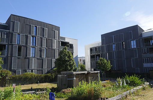 LIEUSAINT_RES-BUILDTOG_BD